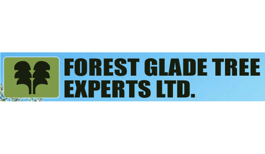 forest glade tree stump service